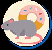 Alimento dos Ratos