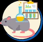 Ratos e camundongos