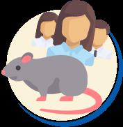 Quantidade de Ratos