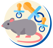 Filhotes de Ratos