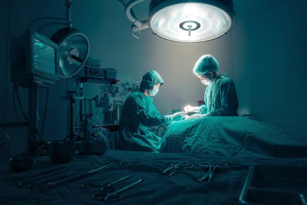 Principais pragas urbanas controladas na dedetização em hospitais