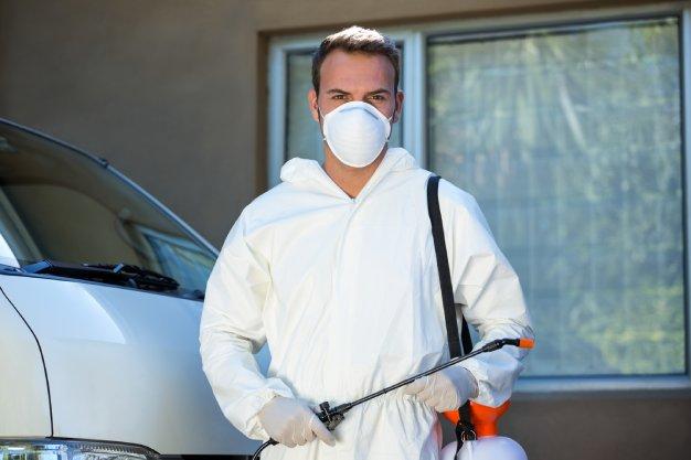 Dedetização de condomínios como escolher a controladora de pragas ideal? - Antinsect