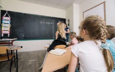 Controle de Pragas em Escolas: assegure a proteção dos seus estudantes