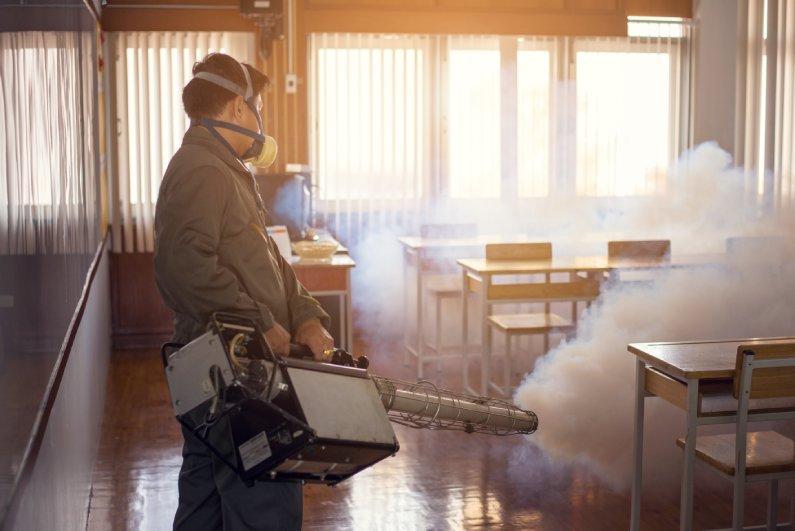 Controle de Pragas em Escolas: efetue o serviço com uma empresa confiável e experiente