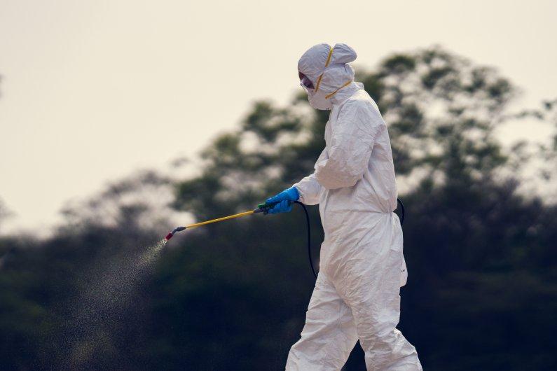 Como é a realização do serviço profissional de sanitização e desinfecção em Porto Alegre