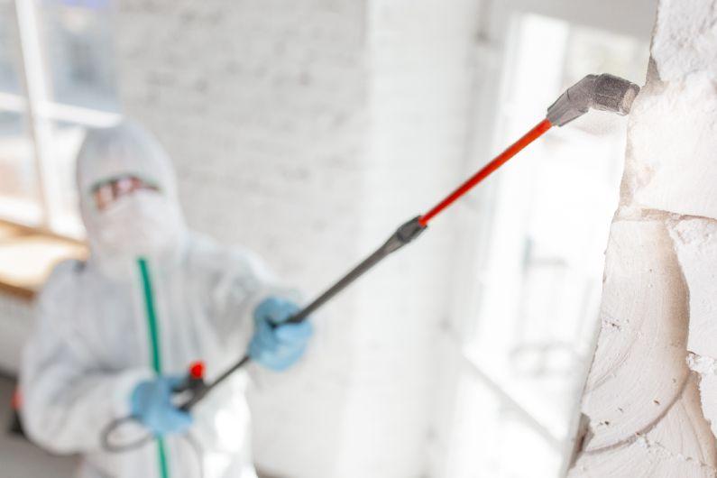 Sanitização de residências: livre-se dos microrganismos nocivos em Porto Alegre