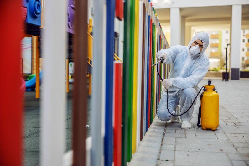 Dedetizadora para empresas: conte com serviços recorrentes de controle de pragas | Porto Alegre